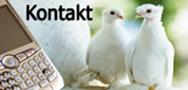 Urlaub in Märchenhafter Umgebung - Buchen Sie jetzt: Asmali Cave House, Romantik und Höhlenhotel in Kappadokien, Türkei