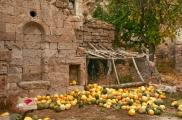 Foto: Das Dorf Cemil | Fotos von Evelyn Kopp ASMALI CAVE HOUSE Höhlenhotel in Kappadokien, Türkei